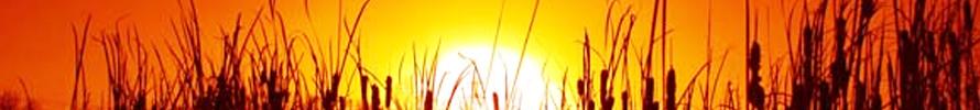 Aislamiento térmico para reducir la sensación de calor en su vivienda