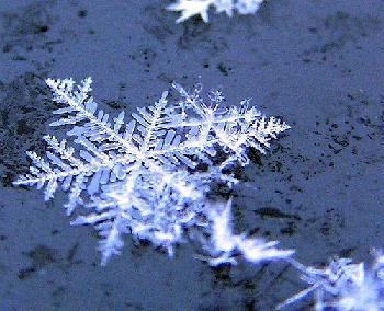 Especialistas en aislamiento térmico para zonas frías